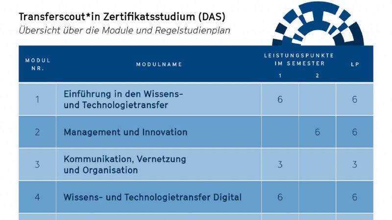 Der Aufbau des Studiengangs (Quelle: Saxony5)